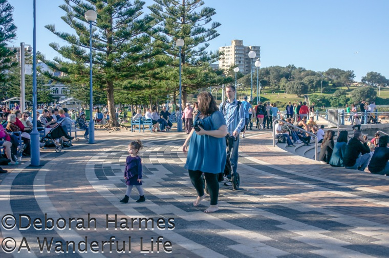 Every single bench facing the ocean was filled on Mother's Day at Coogee Beach in Sydney, Australia
